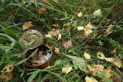 Rusty tin can in the woods. The global problem of environmental pollution Royalty Free Stock Photos