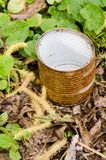 Rusty tin in grass Stock Image