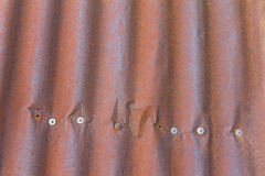 Rusty tin roof nails Stock Images