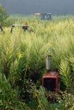 Rusty Tractor Graveyard immagine stock libera da diritti