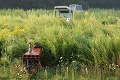 Rusty Tractor Graveyard fotografia stock