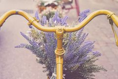 Free Rusty Tricycle Bike With Flower Pot In Tray Against Royalty Free Stock Images - 148678739