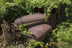 Rusty truck embedded in foliage Stock Photo
