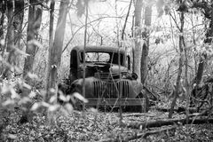Rusty truck in woods Royalty Free Stock Photos