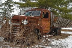 Rusty vintage dodge truck lies abandoned. A Rusty vintage dodge truck lies abandoned royalty free stock image