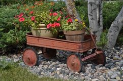 Rusty wagon with pots of flowers Royalty Free Stock Photo