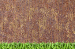 Rusty wall and green grass background royalty free stock photo