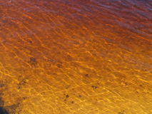 Rusty Water. Rusty colured water caused by red sand Royalty Free Stock Images
