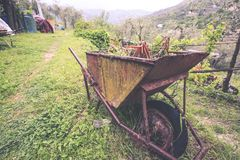 Rusty wheelbarrow with flowers in the garden royalty free stock images