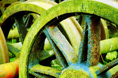 Rusty Wheels. Old train wheels lie rusting and covered in algae Royalty Free Stock Image