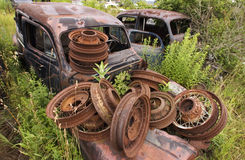 Rusty Wheels. And Cars surrounded by an overgrowth of weeds Stock Images