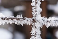 Rusty wire fence covered with hoarfrost in the winter Royalty Free Stock Images