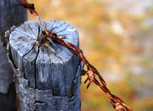 Rusty wire II. Rusty barbed wire tied on wood Stock Image