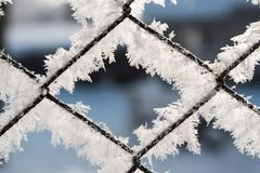 Rusty wire mesh fence covered with hoarfrost in the winter Royalty Free Stock Image