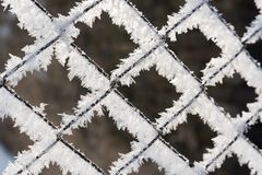 Rusty wire mesh fence covered with hoarfrost in the winter Royalty Free Stock Photo