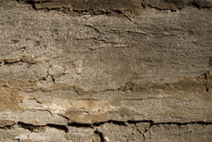 Rusty wood texture Royalty Free Stock Photography