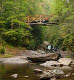 Rusy het ijzerbrug van Chattooga Royalty-vrije Stock Fotografie
