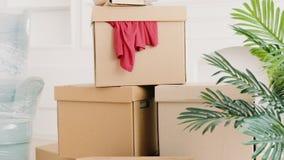 Ruszać się domowego nowego życie początku odmieniania mieszkanie zbiory wideo