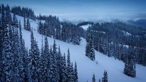 Ruszać się W dół zbocze góry W śniegu zdjęcie wideo