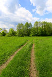 Rut road across meadow Royalty Free Stock Images