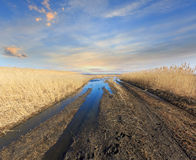 Rut road in spring steppe Royalty Free Stock Images