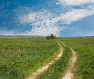 Rut road in steppe Stock Photography