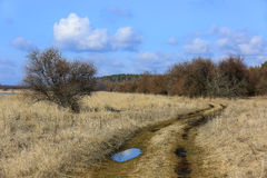 Rut road in steppe at spring time Stock Photo