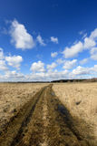 Rut road in steppe Royalty Free Stock Photography