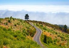 Ruta de la montaña sobre las nubes en Tenerife Foto de archivo