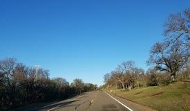 Ruta de los E.E.U.U. de los árboles que conduce el conductor de camión de la forma de vida Fotografía de archivo libre de regalías