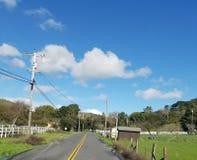 Ruta de los E.E.U.U. de los árboles que conduce el conductor de camión de la forma de vida Imagen de archivo libre de regalías
