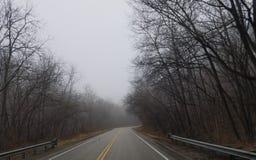 Ruta de los E.E.U.U. de los árboles que conduce el conductor de camión de la forma de vida Fotos de archivo