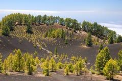 Ruta de los Volcanes, La Palma Stock Photos