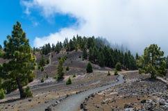 Ruta De Los Volcanes, wycieczkuje ścieżkę, los angeles Palma, Hiszpania Zdjęcie Stock