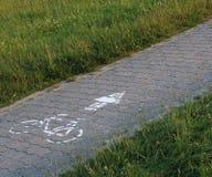 Ruta del ciclo de piedras y de la hierba de pavimentación Imágenes de archivo libres de regalías
