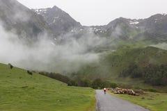 Ruta del Tour de France en los Pirineos, Francia fotos de archivo libres de regalías
