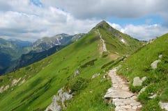 Ruta en las montañas de Tatra, Polonia del verano Foto de archivo