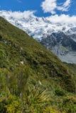 Ruta Nueva Zelanda de la choza de Mueller Imágenes de archivo libres de regalías