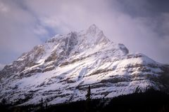 Ruta verde de Icefields en Alberta, Canadá fotos de archivo libres de regalías
