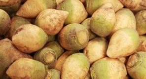 Rutabaga. Raw rutabaga on the shelf of supermarket Royalty Free Stock Image