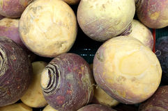 Rutabaga Stock Photo