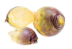 Rutabaga root. Royalty Free Stock Image