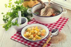 Rutabaga soup with goose meat Royalty Free Stock Image