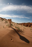 Ruthless Gobi Desert Royalty Free Stock Images
