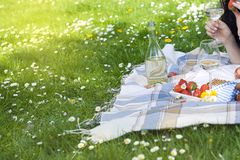 Rutig sommar Tid för grönt gräs för frukt för korgen för plädpicknickäpplen vilar bakgrundsdesignen, kopieringsutrymme Arkivfoto