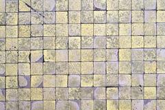 Rutig textur Royaltyfria Bilder