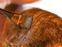 Rutina de la belleza del pelo del colorante con alheña natural Foto de archivo libre de regalías