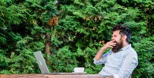 Rutina diaria del periodista del reportero Trabajo en línea Trabajador en línea de los medios de comunicación Escriba el artículo imagenes de archivo