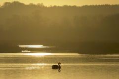 rutland озера Стоковое фото RF