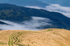 Ruts in the Carpathian mountains Royalty Free Stock Photography